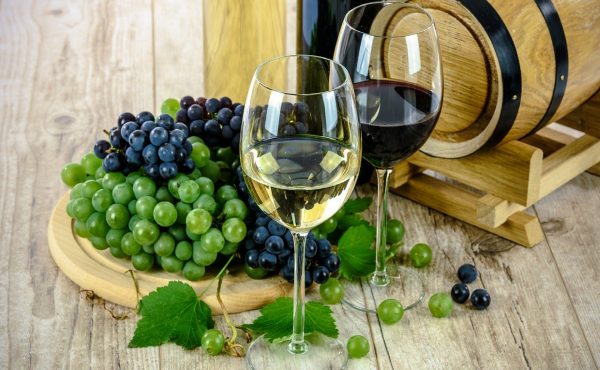 importar vinos