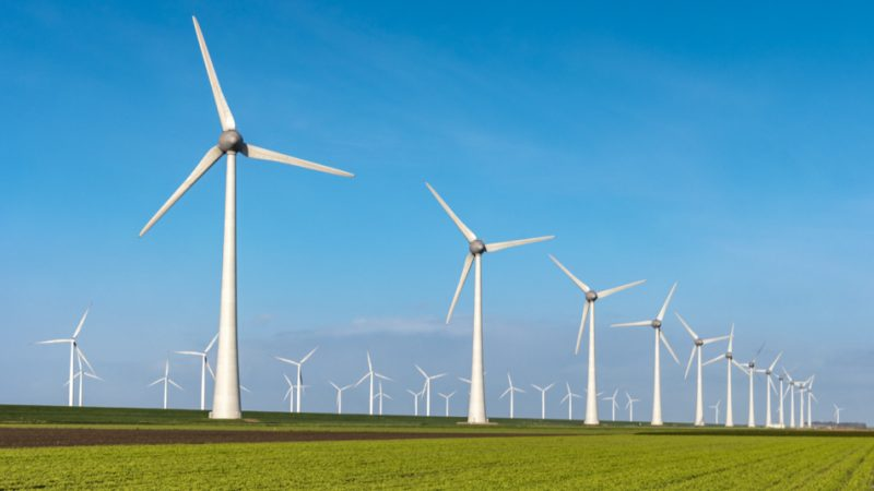 Futuro de una empresa sostenible