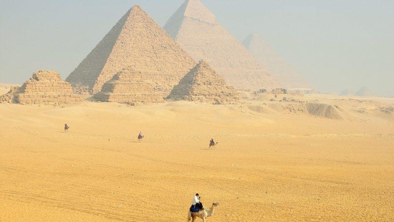 Exportar a Egipto